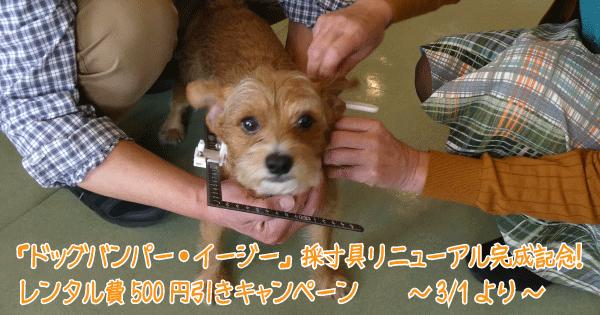 採寸具レンタル料500円引きキャンペーンヘッダ0画像