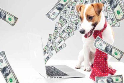 全盲犬グッズ-駆込購入不要!増税後の価格について。