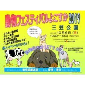 動物フェスティバルよこすか2019に参加します!