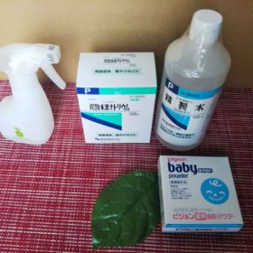 安価で簡単、手作り除菌スプレーとベビーパウダーで膿皮症ケア!